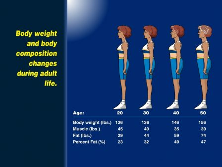 Infographic of muscle loss and weight gain experienced with aging.