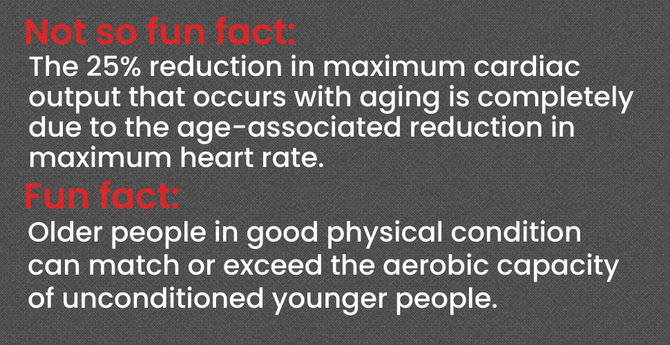 Cardiovascular system facts for senior fitness