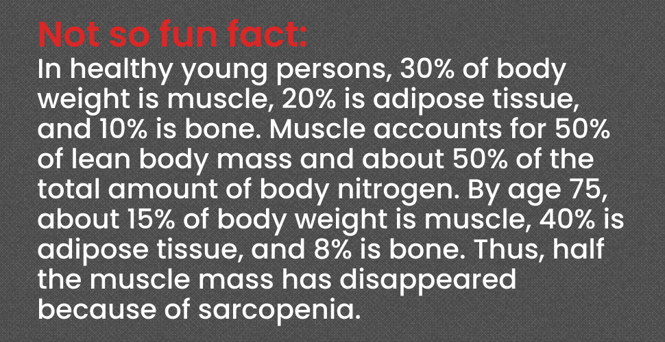 Skeletal muscle system facts for senior fitness